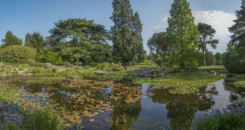Botanical Gardens in Cambridge